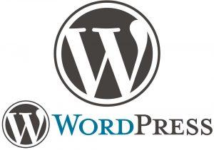 Diseño web WordPress Barcelona 3